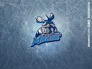 Manitoba Moose Wallpapers - Ice Texture