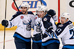 Manitoba Moose Photo Gallery