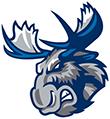 Moose Offer